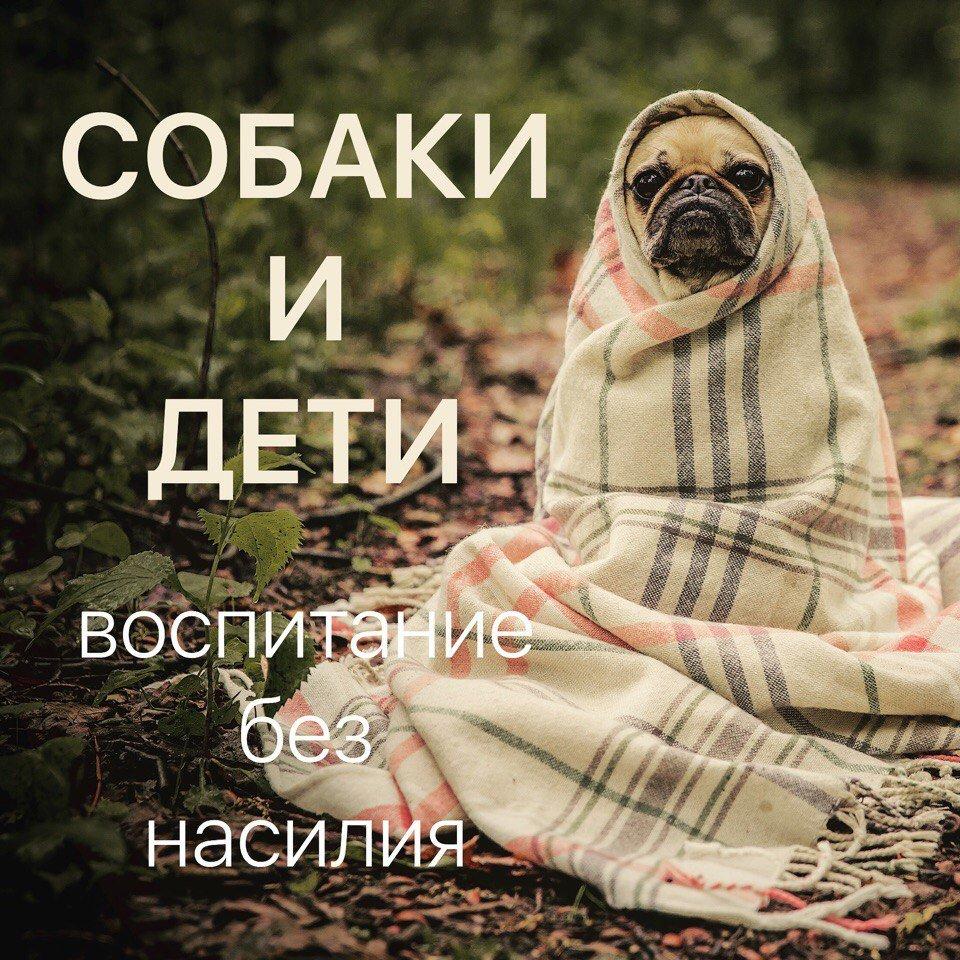 Собаки и дети: воспитание без насилия